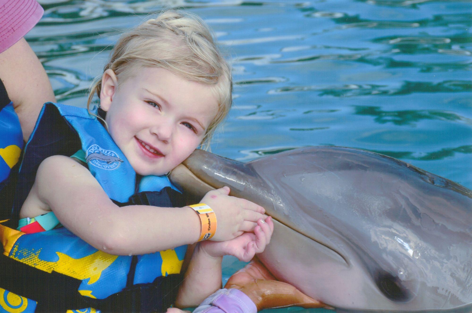 olivia-dolphin