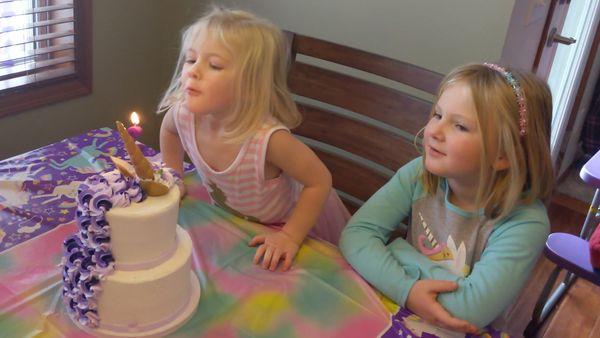 purple unicorn party